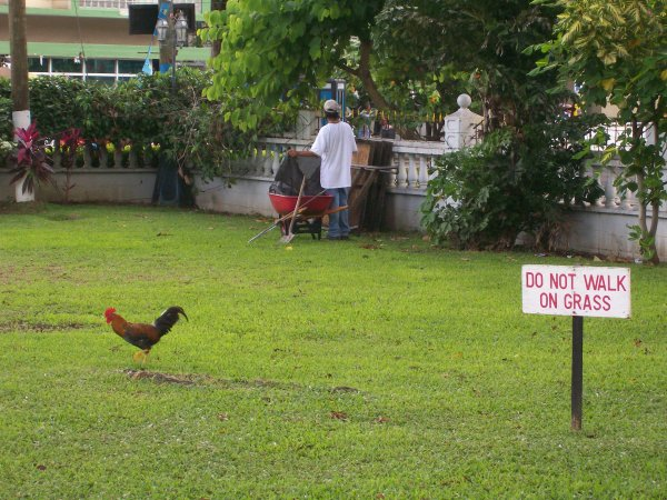 park in Castries